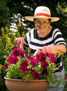 Elder Care in Helena AL: The Benefits of Gardening