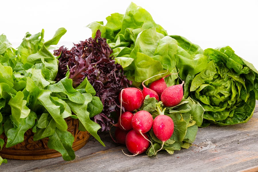 Elder Care in Pelham AL: Adding Greens to Your Senior's Diet